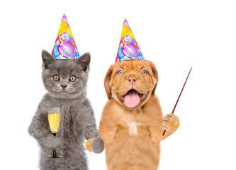 Cat and puppy in birthday hats with glasses of champagne pointing away on empty space. isolated on white background