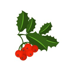 Holly berry branch for Christmas wreath and pattern