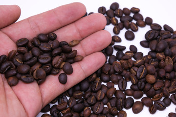 Coffee beans in hand, coffee bean background texture with copy space for text. Royalty high-quality free stock macro photo image of roasted black coffee beans, coffee beans in hands background