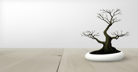 Lonely dried bonsai tree without leaves on wooden table top. Grey background