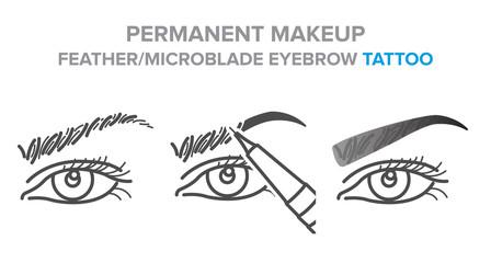 Eyebrow permanent makeup. Tattoo procedure illustration, microblading