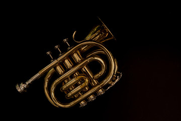 Classical cornet instrument isolated from a black background.
