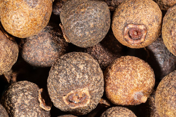 Allspice - macro photo of spice - Pimenta dioica