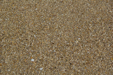 Textured wet sand background