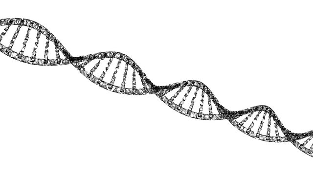 DNA, helix model medicine and network connection lines isolated on white background. Abstract futuristic technology structure in science, medical, and chemistry concept, 3d illustration.
