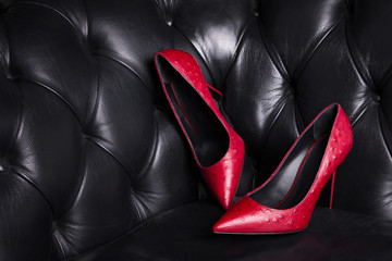 d6dc05229d Two red leather shoes on a dark background. Women's fashionable high-heeled  shoes.