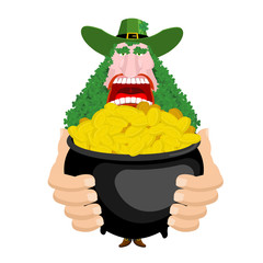 Leprechaun and Pot of gold. beard in Shamrock face. Clover mustache. Ireland holiday. St. Patrick's Day. Traditional Irish holiday. Green leaves trefoil