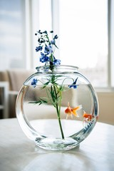 Goldfish in glass bowl on table