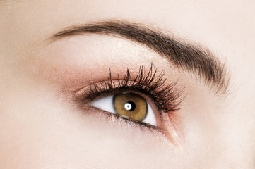 Close up of woman's eye with eye shadow makeup