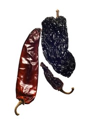 Dried chili pepper isolated on white background