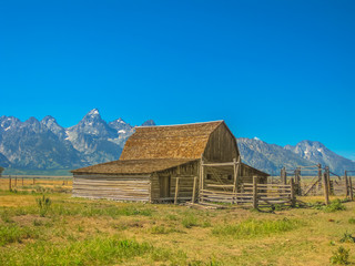 Moulton Barn in Antelope Flats at Grand Teton NP, Wyoming, United States. Popular landmark in the national park. North America travel in summer season. Blue sky with copy space.