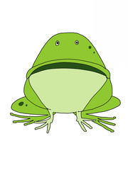 cute cartoon  frog  animal illustration