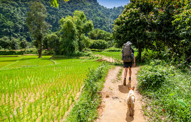 Young traveling backpacker on hiking with dog in forest  outdoor at Vang Vieng , Laos.