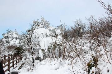"""제주에 있는 """"1100 고지 습지""""의 겨울 풍경이다."""