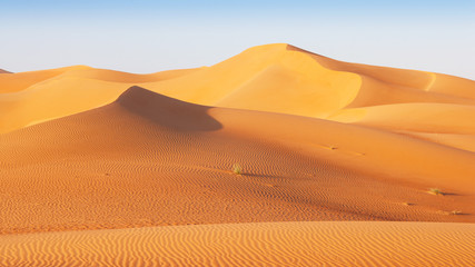 Poster de jardin Desert de sable Dune Landscape in the Empty Quarter