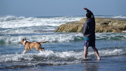 Man throws ball for his dog at the beach