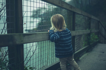 Little toddler by fence in nature