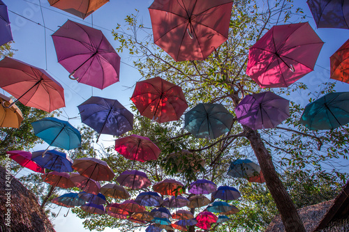 Colorful Umbrella Backgrounds Hanging Decorations In Trees As A Point Of Interest For Customers To Take Pictures Often Seen Restaurants Or Cafes