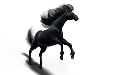 Black running horse on white background isolated, 3d illustration
