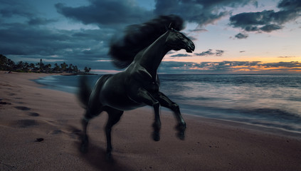 Black running horse on sunset beach, 3d illustration