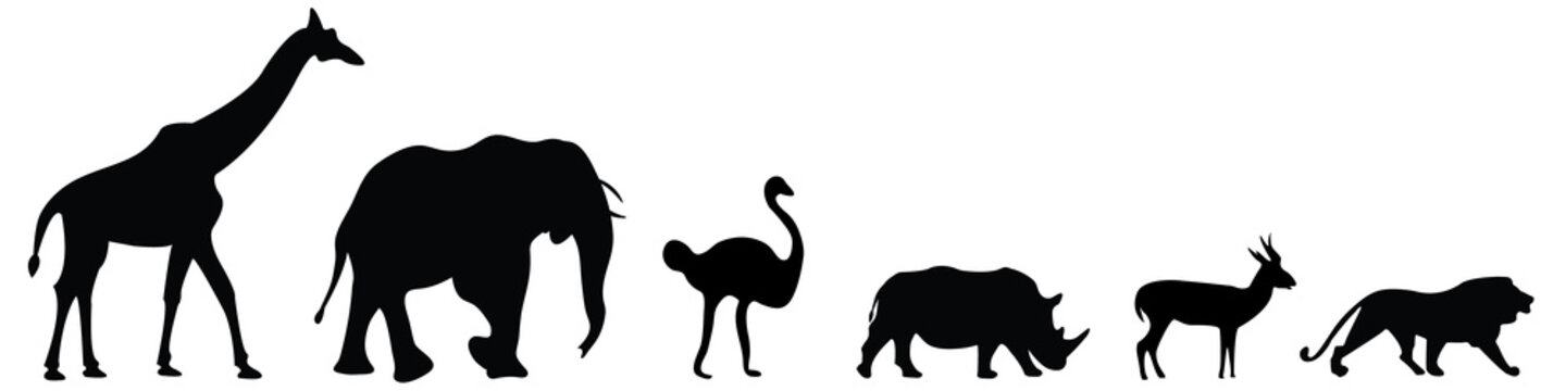 Vector set of six african safari animals