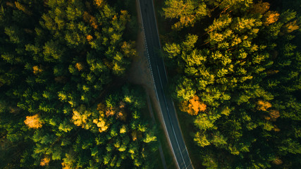 Mountain road and autumn trees above the forest. Yellow, red and green nature, high top view. Aerial drone shoot with wonderful texture.