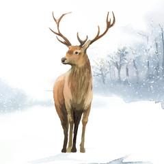 Wall Mural - Male deer painted by watercolor vector