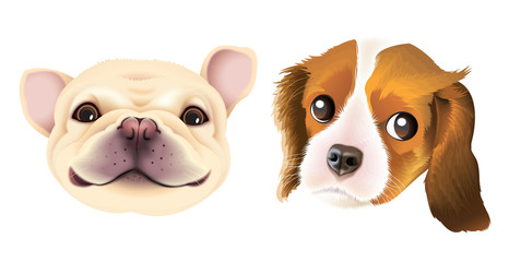 A set of adorable so innocent so cute puppies in a vector format.