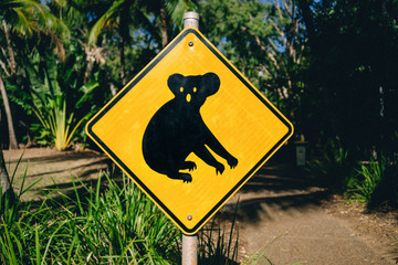 Australia, Magnetic Island, Koala Animal Crossing Sign