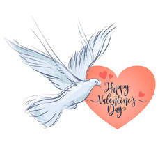 Valentines Day postcard with dove on white background. Vector illustration, design element for congratulation cards, web, print, banners and others