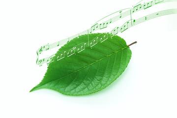 緑 背景 音楽