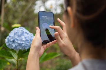 woman's holding smart phone and use take photo. soft focus.