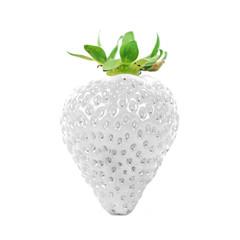 Albino-Erdbeere