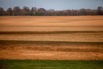 Plowed field in spring season.