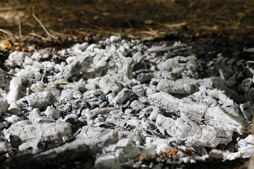 Pile of ashes after the fire went out.