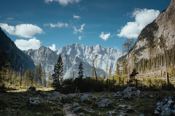 Tranquil view of mountain range in forest against sky