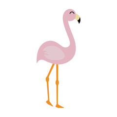 Pink Flamingo - Cute light pink flamingo illustration isolated on white background