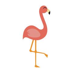 Pink Flamingo - Cute salmon pink flamingo illustration isolated on white background