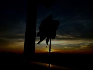 Puesta de sol con molinillo de viento