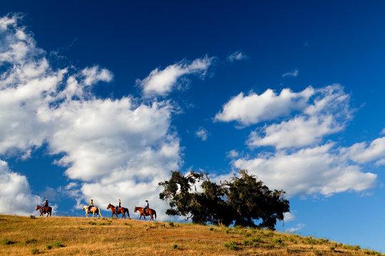 ARROYO GRANDE: A group of people on a recreational horseback ride