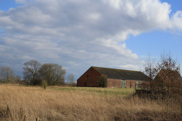a barn of an old farm in the countryside in holland with reed beds, grass and trees in winter
