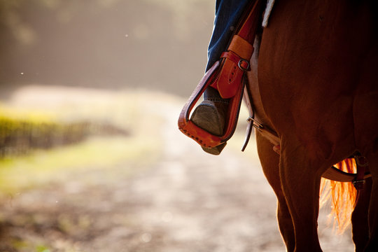 ARROYO GRANDE: abstract view of someone horseback riding