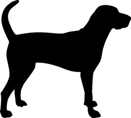 American English Coonhound silhouette black