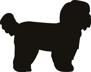 Shih Tzu silhouette black