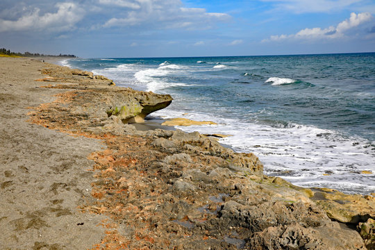The Blowing Rock Preserve in Hobe Sound, Florida, on Jupiter Island, with anastasia limestone outcropping.