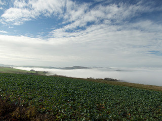 Nebelmeer über Trier
