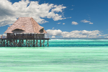 Zanzibar tropical beach and sea - Dongwe - Indian ocean - Africa