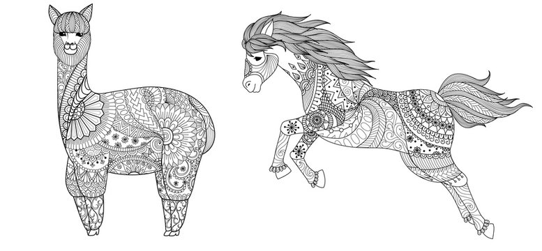 Llama and horse