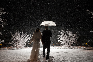 winter wedding blizzard snow umbrella white elegant