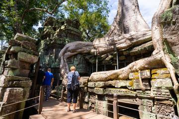 tourist travel at Ta prohm temple